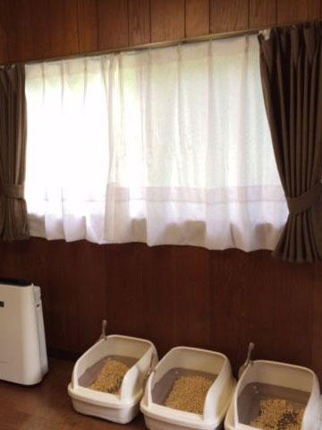 Cattery夢猫庵 トイレと空気清浄器